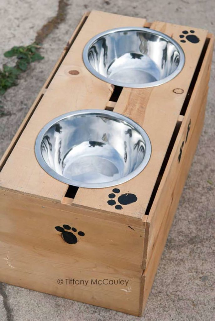 Elevated Dog Feeder