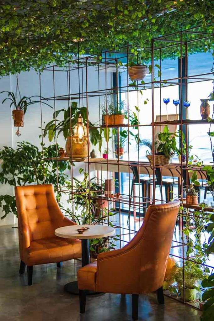 Indoor Potted Gardens
