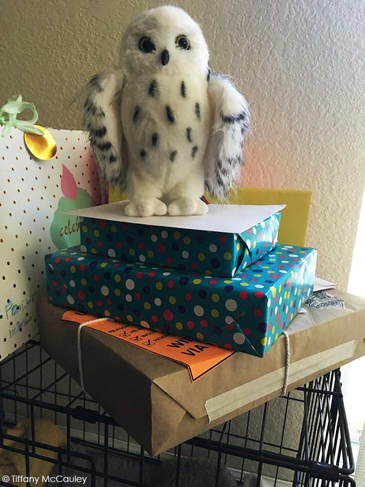 Wrapped birthday gives with a stuffed white spotted owl sitting on top at my harry potter party.